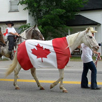 Celebrate Canada Day with the Village of Blackville