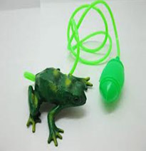 My jumping frog prize!